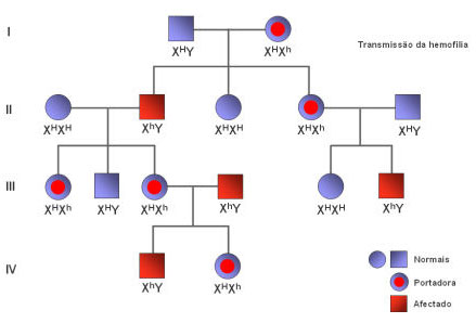 Biologia herança genetica